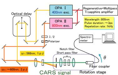 Hamaguchi Lab Coherent Anti Stokes Raman Spectroscopic