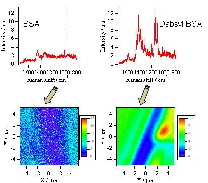 Hamaguchi Lab 785nm Near Infrared Excited Raman