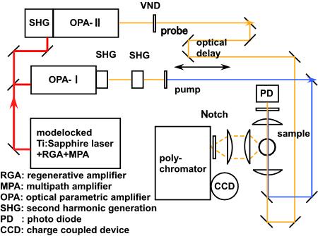Hamaguchi Lab Picosecond Time Resolved Raman